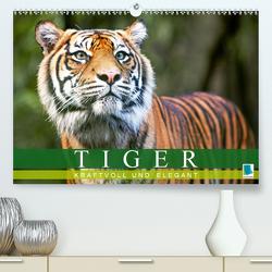 Tiger: kraftvoll und elegant (Premium, hochwertiger DIN A2 Wandkalender 2020, Kunstdruck in Hochglanz) von CALVENDO