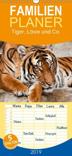 Tiger, Löwe und Co. – Familienplaner hoch (Wandkalender 2019 , 21 cm x 45 cm, hoch) von Enderlein - Bethari Bengals,  Sylke