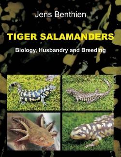 Tiger Salamanders von Benthien,  Jens