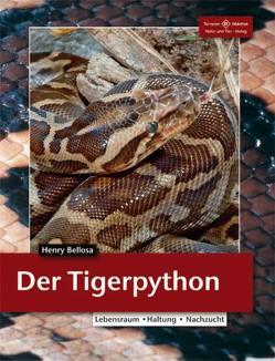 Tigerpythons von Bellosa,  Henry