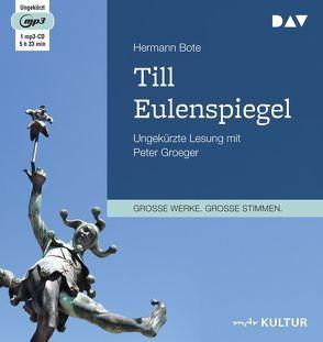 Till Eulenspiegel. Ein kurzweiliges Buch von Till Eulenspiegel aus dem Lande Braunschweig in 96 Historien von Groeger,  Peter, Hermann,  Bote