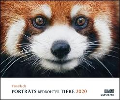 Tim Flach: Porträts bedrohter Tiere 2020 – Tier-Fotografie – Wandkalender 58,4 x 48,5 cm – Spiralbindung von DUMONT Kalenderverlag, Flach,  Tim