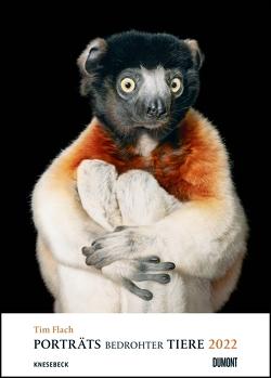Tim Flach: Porträts bedrohter Tiere 2022 – Tier-Fotografie – Poster-Kalender 50 x 70 cm – Spiralbindung von Flach,  Tim