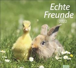 times&more Echte Freunde Bildkalender 2022 von Heye