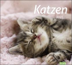 times&more Katzen Bildkalender Kalender 2021 von Heye