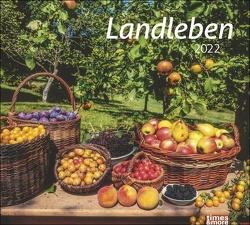 times&more Landleben Bildkalender 2022 von Heye