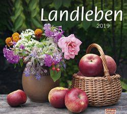 times&more Landleben Bildkalender – Kalender 2019 von Heye
