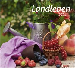 times&more Landleben Bildkalender Kalender 2021 von Heye