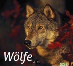 times&more Wölfe Bildkalender Kalender 2021 von Heye