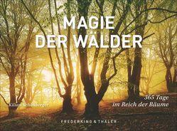 Tischaufsteller Magie der Wälder von Schönberger,  Kilian