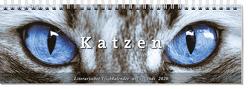 Tischkalender Katzen 2020 von -
