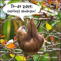 To-do 2019: Gepflegt abhängen! – Lustige Faultiere als Broschürenkalender – Wandkalender – mit herausnehmbarem Poster – Format 30 x 30 cm von DUMONT Kalenderverlag