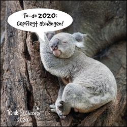 To-do 2020: Gepflegt abhängen! – Lustige Tiere als Broschürenkalender – Wandkalender – mit herausnehmbarem Poster – Format 30 x 30 cm von DUMONT Kalenderverlag