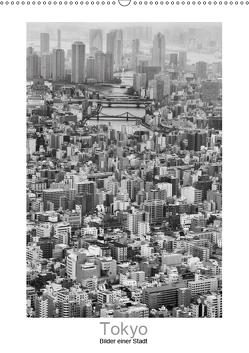 Tokyo – Bilder einer Stadt (Wandkalender 2019 DIN A2 hoch) von Scheffner,  Jan