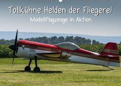 Tollkühne Helden der Fliegerei – Modellflugzeuge in Aktion (Wandkalender 2019 DIN A2 quer) von Teßen,  Sonja