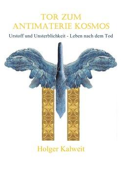 Tor zum Antimaterie Kosmos von Kalweit,  Holger