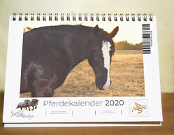 Tischkalender Pferde 2020 von Waldow,  Michael, Wohlleben,  Sandy
