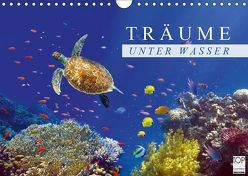 Träume unter Wasser (Wandkalender 2019 DIN A4 quer) von Melz,  Tina