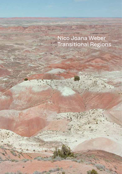 Transitional Regions von Wappler,  Friederike, Weber,  Nico Joana