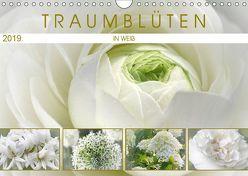 Traumblüten in Weiß (Wandkalender 2019 DIN A4 quer) von Cross,  Martina