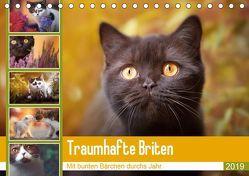 Traumhafte Briten (Tischkalender 2019 DIN A5 quer) von Tierfotografie by Janina Bürger,  Wabi-Sabi