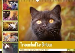 Traumhafte Briten (Wandkalender 2018 DIN A3 quer) von Tierfotografie by Janina Bürger,  Wabi-Sabi