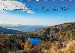 Traumlandschaften im Bayrischen Wald (Wandkalender 2019 DIN A2 quer) von Stadler,  Lisa