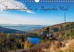 Traumlandschaften im Bayrischen Wald (Wandkalender 2019 DIN A4 quer) von Stadler,  Lisa