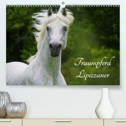 Traumpferd Lipizzaner (Premium, hochwertiger DIN A2 Wandkalender 2020, Kunstdruck in Hochglanz) von Starick,  Sigrid