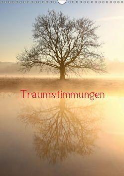 Traumstimmungen (Wandkalender 2019 DIN A3 hoch) von Kaiser,  Bernhard