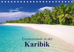Traumstrände in der Karibik (Tischkalender 2019 DIN A5 quer) von Stanzer,  Elisabeth