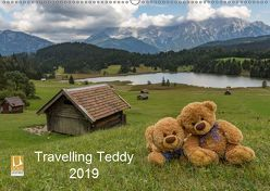 Travelling Teddy 2019 (Wandkalender 2019 DIN A2 quer) von C-K-Images