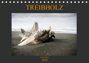 Treibholz Costa Rica (Tischkalender 2020 DIN A5 quer) von Staack,  Oliver