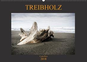 Treibholz Costa Rica (Wandkalender 2018 DIN A2 quer) von Staack,  Oliver