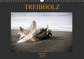 Treibholz Costa Rica (Wandkalender 2019 DIN A3 quer) von Staack,  Oliver