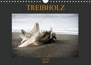 Treibholz Costa Rica (Wandkalender 2019 DIN A4 quer) von Staack,  Oliver