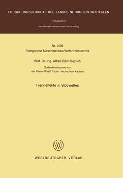 Trenneffekte in Stoßwellen von Beylich,  Alfred E.