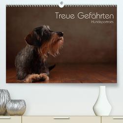 Treue Gefährten – Hundeportraits (Premium, hochwertiger DIN A2 Wandkalender 2021, Kunstdruck in Hochglanz) von Behr,  Jana