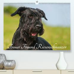 Treuer Freund Riesenschnauzer (Premium, hochwertiger DIN A2 Wandkalender 2020, Kunstdruck in Hochglanz) von Starick,  Sigrid