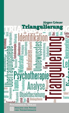 Triangulierung von Grieser,  Jürgen