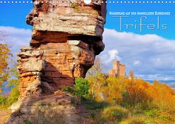 Trifels – Wanderung auf dem Annweilerer Burgenweg (Wandkalender 2019 DIN A3 quer) von LianeM