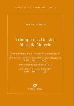 Triumph des Geistes über die Materie von Sackmann,  Dominik
