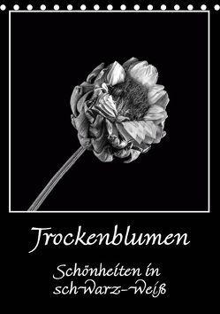 Trockenblumen Schönheiten in schwarz-weiß (Tischkalender 2019 DIN A5 hoch) von Beuck,  Angelika