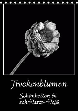 Trockenblumen Schönheiten in schwarz-weiß (Tischkalender 2021 DIN A5 hoch) von Beuck,  Angelika