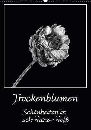 Trockenblumen Schönheiten in schwarz-weiß (Wandkalender 2018 DIN A2 hoch) von Beuck,  Angelika