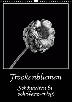 Trockenblumen Schönheiten in schwarz-weiß (Wandkalender 2021 DIN A3 hoch) von Beuck,  Angelika