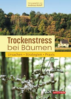 Trockenstress bei Bäumen von Roloff (Hg.),  Andreas