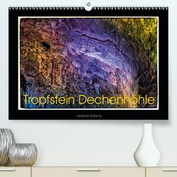 Tropfstein Dechenhöhle (Premium, hochwertiger DIN A2 Wandkalender 2021, Kunstdruck in Hochglanz) von Adams foto-you.de,  Heribert