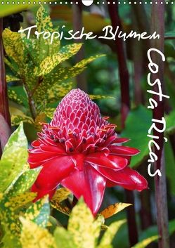Tropische Blumen Costa Ricas (Wandkalender 2018 DIN A3 hoch) von M.Polok,  k.A.