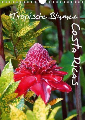 Tropische Blumen Costa Ricas (Wandkalender 2018 DIN A4 hoch) von M.Polok,  k.A.